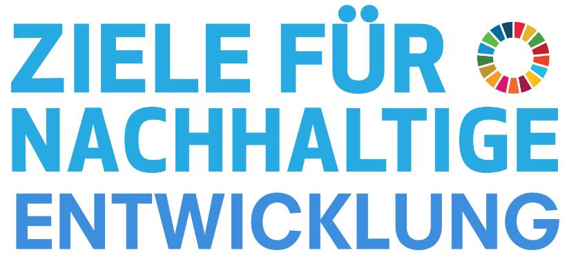 Abbildung 1: Logo der SDGs