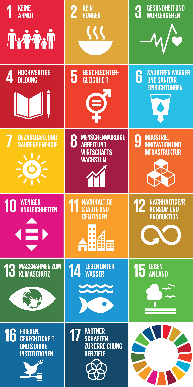 Abbildung 1: SDG Icons